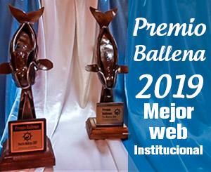 Premio ballena 19